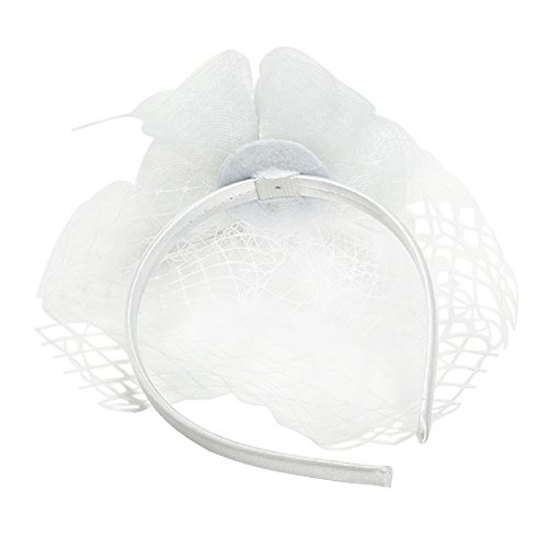 Rosemarie Collections Women's Mesh Flower Bridal Headpiece with Mini Veil