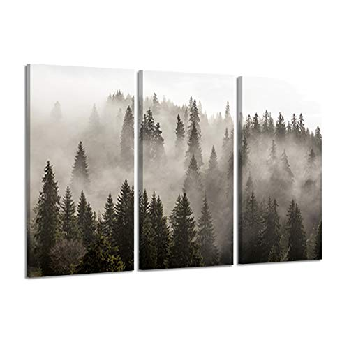 Forest Canvas Art - Natural Landscape Wall Art Paintings: Photographic Artworks Dark Tree line with Foggy Misty Forest Pine Print on Wrapped Canvas for Decoration, Multi-Piece Image (16