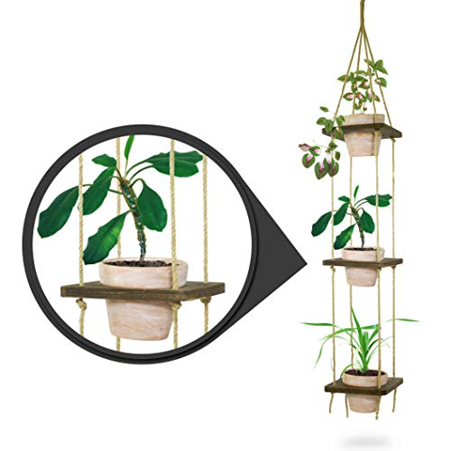 23 Bees | Macrame Hanging Planter with Terra Cotta Clay Pot | Antique Holder Shelf & Floating Shelves | Handcrafted Wood with Rope and Hanger (3 Terra Cotta Pots with -