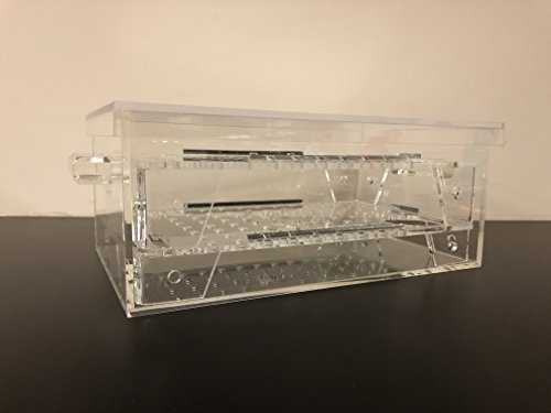 c Clear Custom Box for Cigar Storage and Display (Old World Humidor)