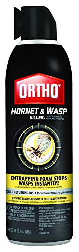 ortho-hornet-and-wasp-killer-case-of-12-16-oz