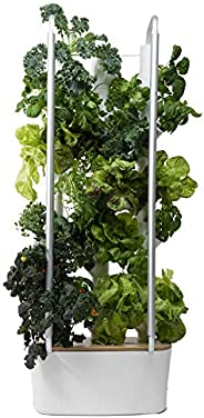 Gardyn Home Indoor Smart Garden - WiFi Integrated Vertical Gardening Kit with AI-Based App - Best Invention of