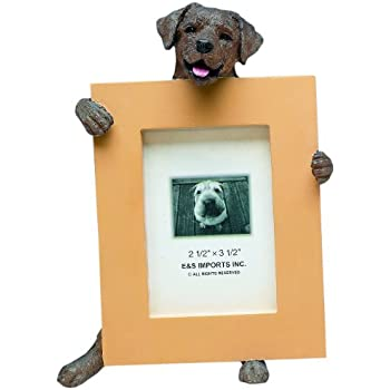 Amazon Com Black Great Dane Picture Frame Holds Your