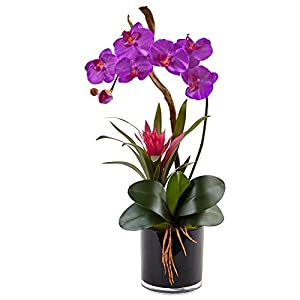 Nearly Natural Orchid and Bromeliad Silk Arrangement 104