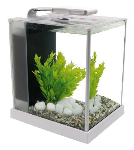 Fluval Spec III Aquarium Kit, 2.6-Gallon, White