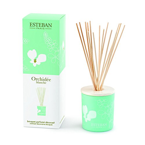 Esteban Orchidee Blanche Scented Decorative Bouquet Diffuser 3.3 oz Scented Decorative Bouquet Diffuser