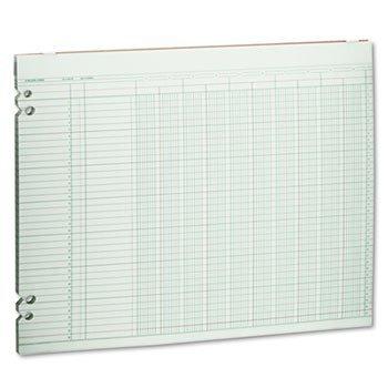 amazon accounting sheets 10 columns 11 x 14 100 loose sheets