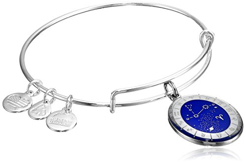 Alex Ani Constellation Bangle Bracelet