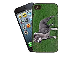 Eclipse Gift Ideas Staffordshire Bull Terrier Phone Case, DesignFor Apple Iphone 5/5S/Cover