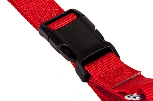 Image of GoGo Pet Products GoGo 3/8-Inch Martingale Dog Collar, X-Small, Red