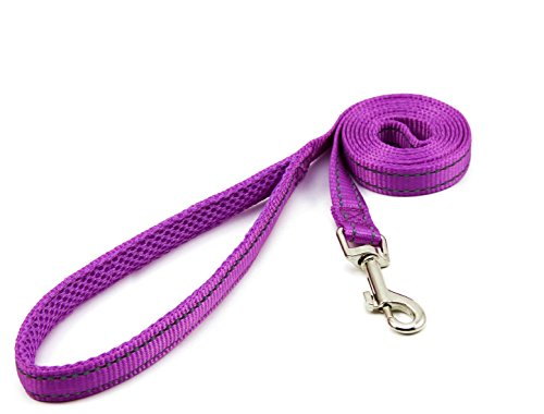 Image of BIG SMILE PAW Reflective Dog Leash for Small Dogs,Padded Handle (Purple)