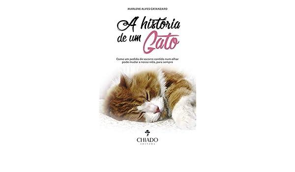 A História de um Gato (Portuguese Edition): Marlene Alves Catanzaro: 9789895171736: Amazon.com: Books