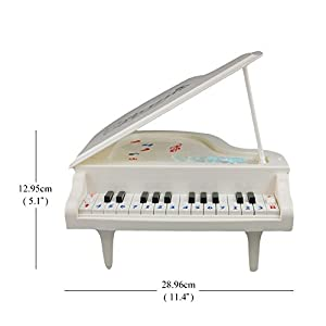 Fajiabao Best Birthday Gift Electronic 14 Keys Little Educational Piano Music Keyboard Game Toy Set with Light and Song for Children Boys Girls Kids Musical Early Learning
