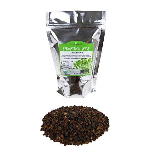 Handy Pantry Bulk Organic Buckwheat Sprouting Seed - 1 LB...