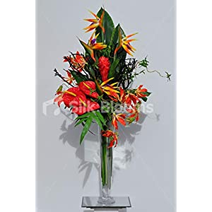 Silk Blooms Ltd Artificial Red Anthurium, Gloriosa and Bird of Paradise Arrangement w/Black Wood and Foliage