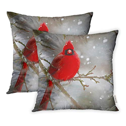 Emvency Set of 2 18x18 Inch Throw Pillow Covers Cases Beautiful Michigan Birds in Winter Settings Sparrows Cardinals Juncos Hawks Blue Jays Finches Woodpeckers Case Cover Cushion Two Sided
