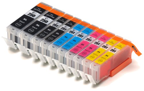10 Pack Blake Printing Supply Ink Cartridges for Canon 251, 250 Pixma iP7220 iX6820 MG5420 MG5422 MG5520 MG5522...