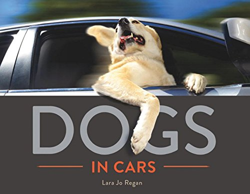 Dogs in Cars - Preloved Dogs Pets Uk