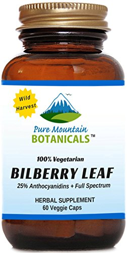 Bilberry Capsules. Full Spectrum Wild Harvest Bilberry Leaf & Concentrated Extract. 60 Veggie Kosher Caps Blueberry Leaf Extract