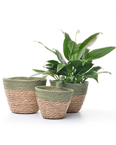 Weave Flower Planter Grass Woven Flower Pot Set of 3 for Artificial Flowers Decorative Wedding Indoor Rustic Nordic Home Decor Succulent (3, Green)
