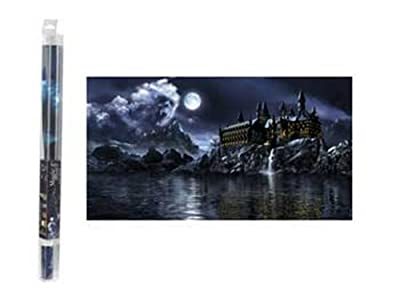 """Hydor H2Show Magic World Background with Application Gel, 31.5"""" x 15.75"""" by Hydor USA, Inc."""
