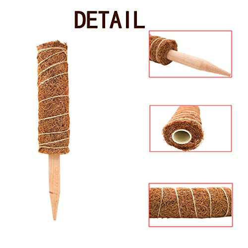 S-Mechanic 12 Inches Coir Totem Pole, Plant Support Totem Pole with Velcro, Coir Moss Totem Pole Coir Moss Stick for Climbing Indoor Plants, Plant Support Extension (2 Pack)