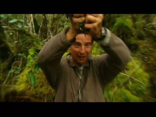 Bear Grylls in Ecuador