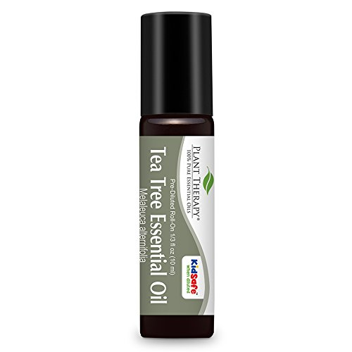 Diluted Absolute Oil (Plant Therapy Tea Tree (Melaleuca) Pre-Diluted Essential Oil Roll-On. Ready to use! 100% Pure, Therapeutic Grade Essential Oils Diluted in Fractionated Coconut Oil. 10 ml (1/3 oz).)