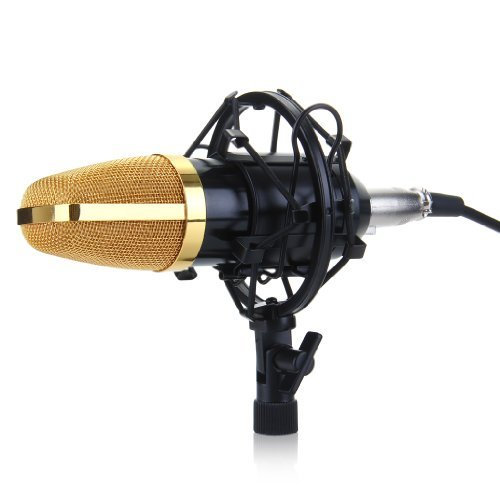 Excelvan BM-700 Condenser Microphone Recording Mic with Shock Mount (Black)