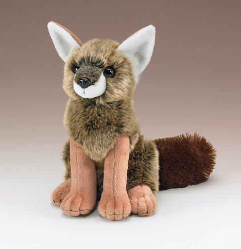 Coyote Pup 10