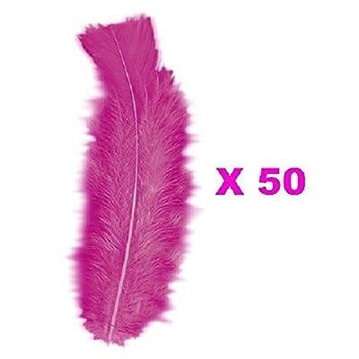 50 Plumes droites rose fuschia 15 cm