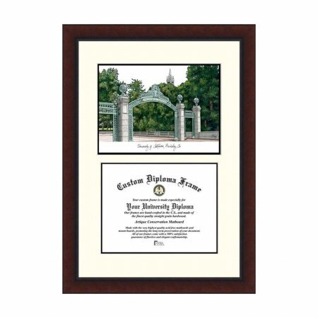 NCAA California Golden Bears Berkeley Legacy Scholar Diploma Frame, Multicolor, One Size by Campus Images