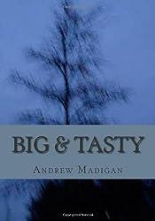 Big & Tasty: Martin Amis Lost the Plot