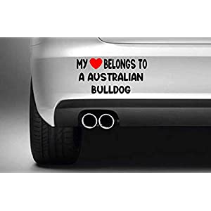 Poloran My Heart Belongs to A Australian Bulldog White car Decals Cute 30