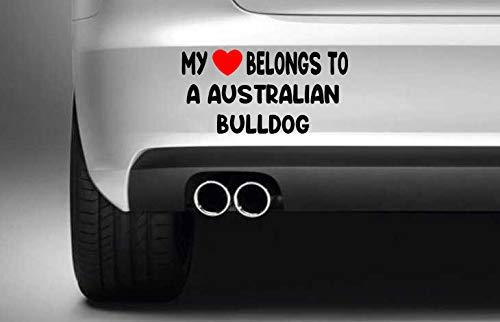 Poloran My Heart Belongs to A Australian Bulldog White car Decals Cute 1