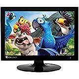 Technotech (38.1CM) 15 Inch TFT LCD Monitor for Pc Desktop VGA Port Only (Black)
