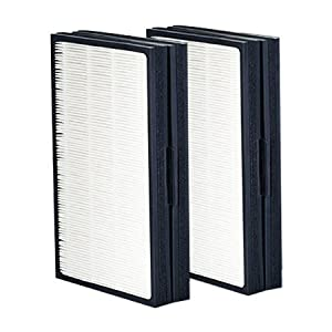 Blueair Pro L Genuine Replacement Particle Filter (1 set of 2 filters)
