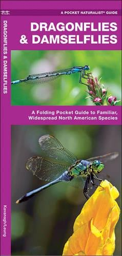 Dragonflies & Damselflies: A Folding Pocket Guide to Familiar Widespread, North American Species (A Pocket Naturalist Guide)