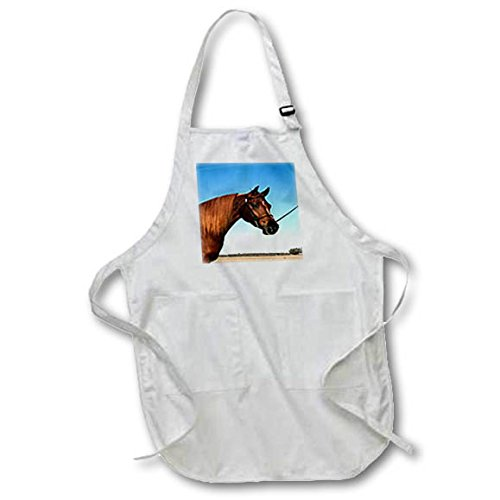 3dRose TDSwhite – Horse Equine Photos - Arabian Show Horse Pasture - BLACK Full Length Apron with Pockets 22w x 30l (apr_285453_4) by 3dRose