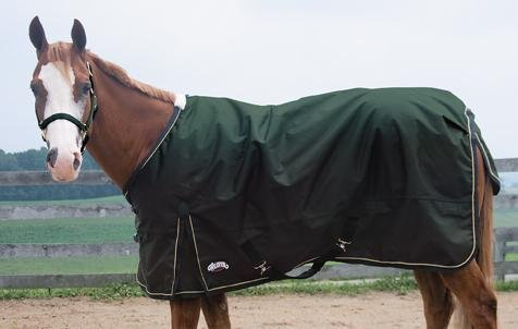 Midweight Turnout Horse (Weaver Midweight Horse Turnout Blanket - Size:84