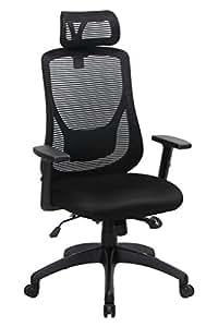 VIVA Office Ergonomic High Back Mesh Chair with Adjustable Headrest and Armrest (Viva1168F1)
