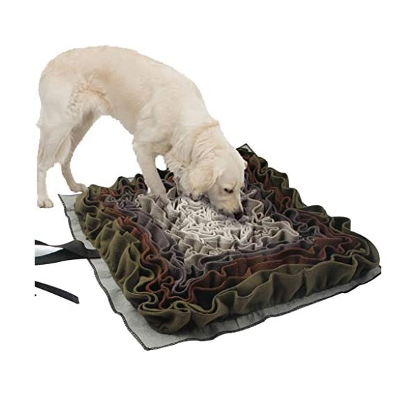 IFOYO Dog Snuffle Mat, Dog Feeding Mat Washable Snuffle Pad Smell Training Blanket Nose Work Feeding Mat Pet Activity Mat for Foraging Instinct, Sress Release, Slow Eating, 40x40cm/15.7x15.7in 1