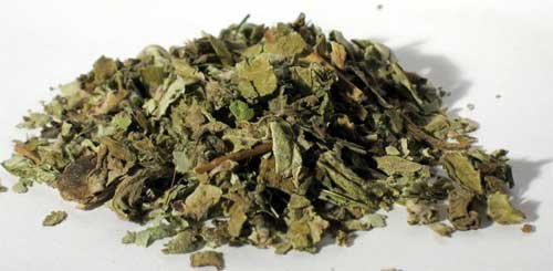 Coltsfoot Leaves (Coltsfoot Leaf cut 1oz 1618 gold)