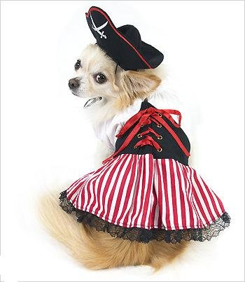 Lady Pirate Costume For Dogs