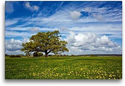 Calvendo Tela In Tessuto Di Alta Qualità, 45 Cm X 30 Cm Orizzontale, In Rovere, Immagine Su Telaio A Cunei, Su Vera Tela, Stampa Artistica: Lasciatevi In Primavera Natur Natura
