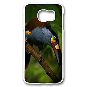 Galaxy S6 case, white PC Fashion Designed Phone Case for Samsung Galaxy S6 - plate-billed mountain toucan