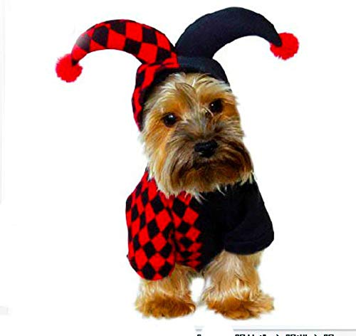 (Clown three-dimensional dog clothes christmas halloween autumn and winter -C)