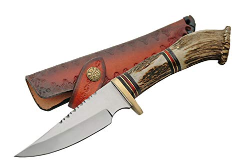SZCO Supplies Crown Hunting Knife