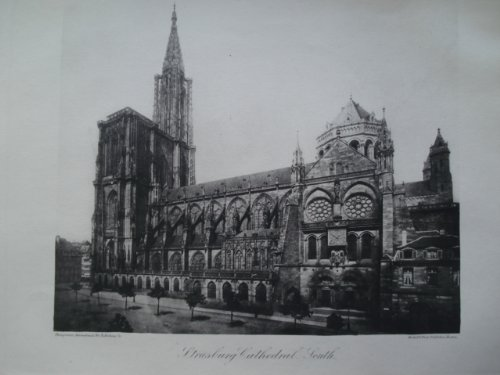 Strasbourg Cathedral - 8