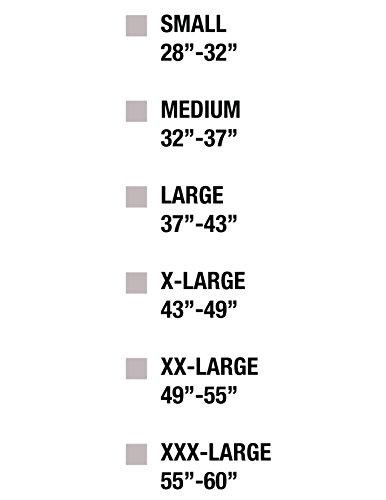 Cordova SB-M Back Support Belt with Attached Suspenders, Black, Medium by Cordova (Image #4)